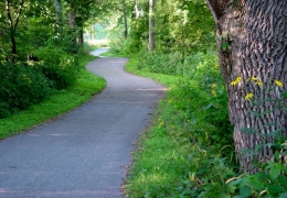 winding bike trail